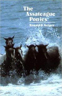The Assateague Ponies
