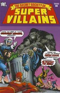 The Secret Society of Super-Villains 1