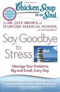Chicken Soup for the Soul Say Goodbye to Stress