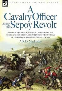 A Cavalry Officer During the Sepoy Revolt