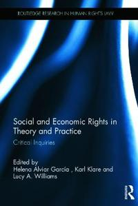 Social and Economic Rights in Theory and Practice: Critical Inquiries