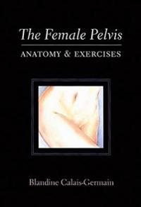 The Female Pelvis: Anatomy & Exercises