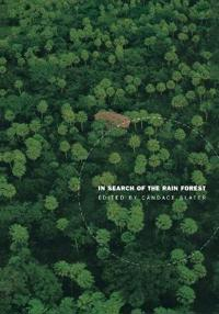In Search of the Rain Forest