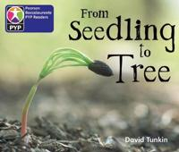 Primary Years Programme Level 2 From Seedling to tree 6Pack