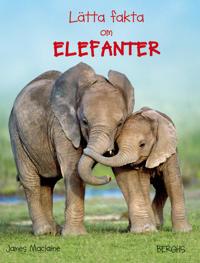 Lätta fakta om elefanter