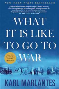 What It Is Like to Go to War
