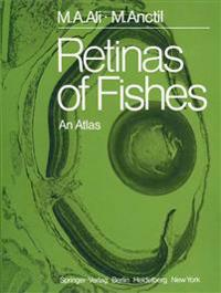 Retinas of Fishes