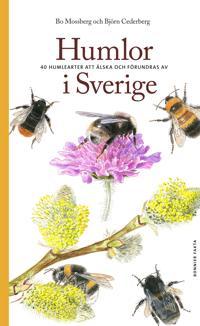 Humlor i Sverige : 40 arter att älska och förundras över