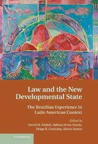 Law and the New Developmental State