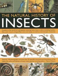 The Natural History of Insects: A Guide to the World of Arthropods, Covering Many Insect Orders, Including Beetles, Flies, Stick Insects, Dragonflies,