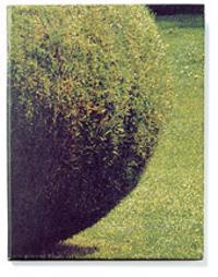Form av gräs -  pdf epub