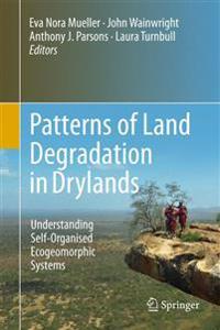 Patterns of Land Degradation in Drylands