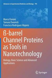 ß-barrel Channel Proteins As Tools in Nanotechnology