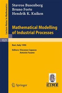 Mathematical Modelling of Industrial Processes