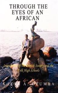 Through the Eyes of an African