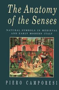 The Anatomy of the Senses