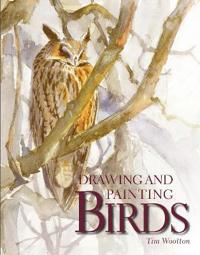 Drawing and Painting Birds