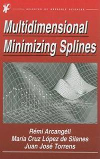 Multidimensional Minimizing Splines