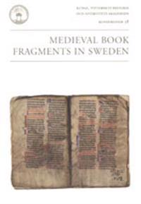 Medieval book fragments in Sweden : an international seminar in Stockholm, 13-16 November 2003