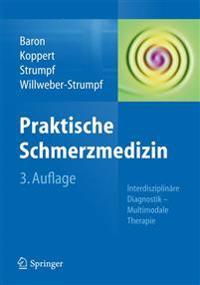Praktische Schmerzmedizin: Interdisziplinare Diagnostik - Multimodale Therapie
