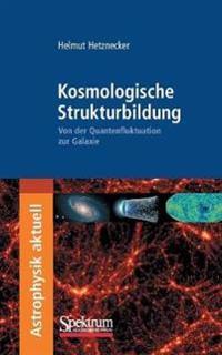 Kosmologische Strukturbildung: Von der Quantenfluktuation Zur Galaxie
