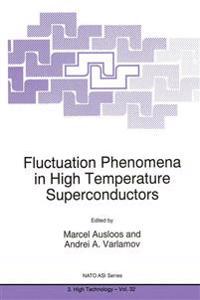 Fluctuation Phenomena in High Temperature Superconductors