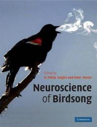 Neuroscience of Birdsong