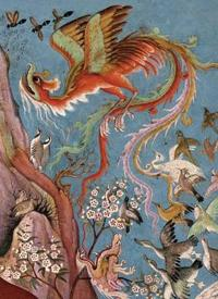 Canticle of the Birds