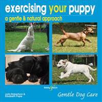 Exercising Your Puppy