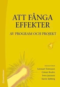 Att fånga effekter : av program och projekt