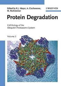 Cell Biology of the Ubiquitin-Proteasome System, Volume 3