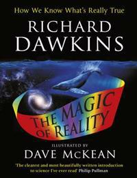 Magic of reality - illustrated childrens edition