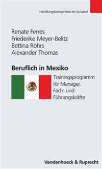 Beruflich in Mexiko