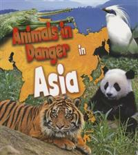 Animals in Danger in Asia
