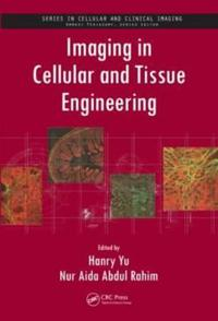 Imaging in Cellular and Tissue Engineering
