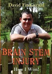 Brain Stem Injury