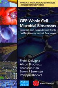 Gfp Whole Cell Microbial Biosensors: Scale-Up and Scale-Down Effects on Biopharmaceutical Processes
