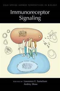 Immunoreceptor Signaling