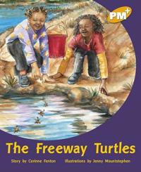 The Freeway Turtles