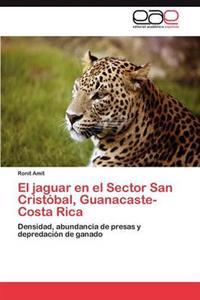 El Jaguar En El Sector San Cristobal, Guanacaste-Costa Rica