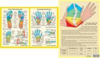 HandFoot Reflexology -- A4