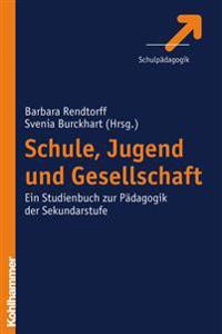Schule, Jugend Und Gesellschaft: Ein Studienbuch Zur Padagogik Der Sekundarstufe