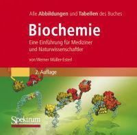 Bild-DVD, Biochemie: Die Abbildungen Des Buches