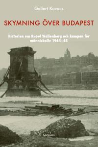 Skymning över Budapest : den autentiska historien om Raoul Wallenberg och kampen för människoliv 1944-45