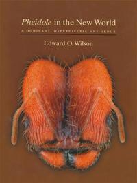 <i>Pheidole</i> in the New World
