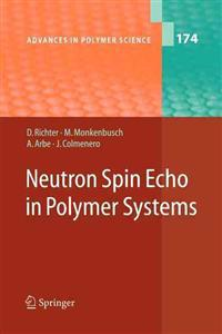 Neutron Spin Echo in Polymer Systems