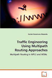 Traffic Engineering Using Multipath Routing Approaches