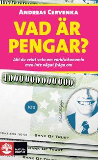 Vad är pengar? : allt du velat veta om världsekonomin men inte vågat fråga om