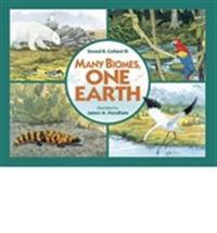 Many Biomes, One Earth: Exploring Terrestrial Biomes of North and South America