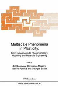 Multiscale Phenomena in Plasticity